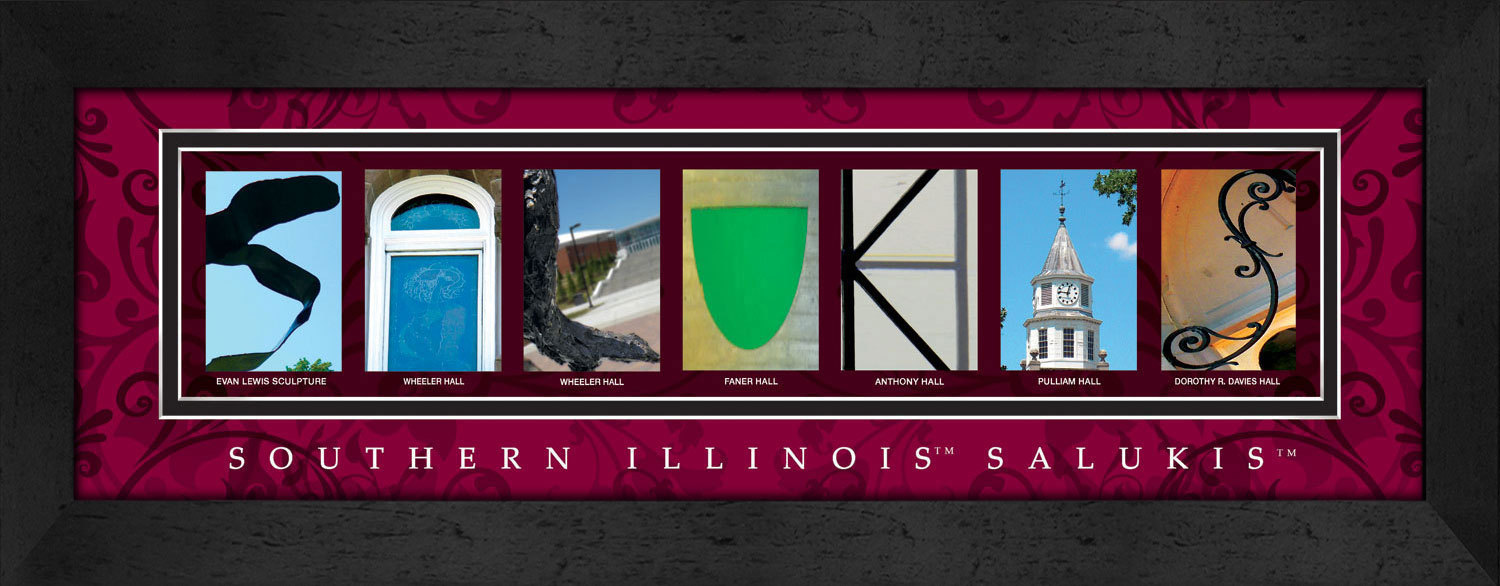 Primary image for Southern Illinois Salukis Officially Licensed Framed Campus Letter Art