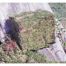 Oregon Moss Bales - $38.99+
