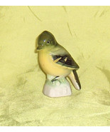 Yellow Bellied Fly Catcher  Canadian Tenderleaf Tea Premium  Bird Number 23 - $13.50