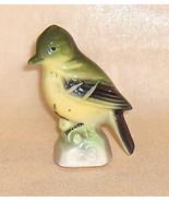 Yellow Bellied Fly Catcher  Number 23  Canadian Tenderleaf Tea Premium  ... - $11.25