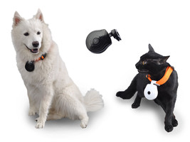 480P  Pet Camera LCD Screen AVI Format Timing Take Photo Video Real Time... - $55.44