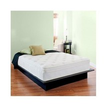 "13"" Night Therapy Deluxe Euro Box Top Spring Mattress - Queen - $370.26"