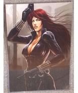 Avengers The Black Widow Glossy Print 11 x 17 In Hard Plastic Sleeve - $24.99