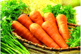 200pcs/bag carrot seeds Organic Heirloom seeds vegetables fruit Five - $4.00