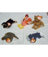 Ty Teenie Beanie Babies Lot of 5 Steg Doby Stru... - $12.13