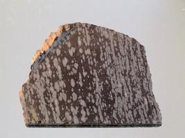Snowflake Obsidian Rough Slab - $9.89