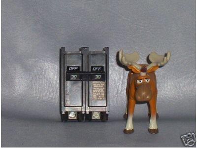 Challenger Circuit Breaker 30 A/2 E16248