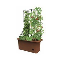 Vegetable Patch Mobile Self Watering Patio Planter Garden Grow Organic V... - £49.95 GBP