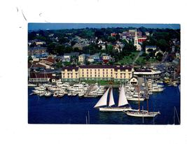 Newport, Road Island Harbor -Postcard) - $1.95