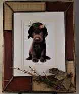 Chocolate Lab picture with Decorative Woodsy Frame - $23.95