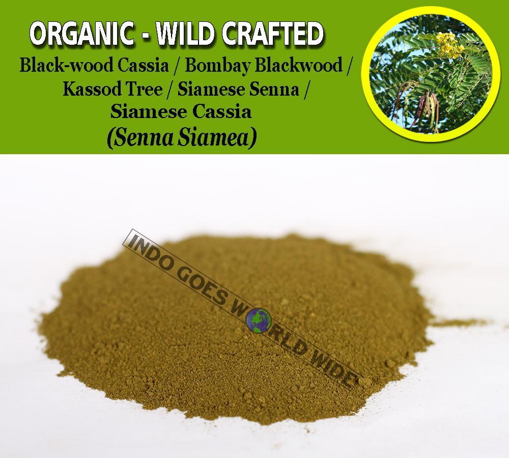 POWDER Black-wood Cassia Bombay Blackwood Kassod Tree Siamese Senna Senna Siamea