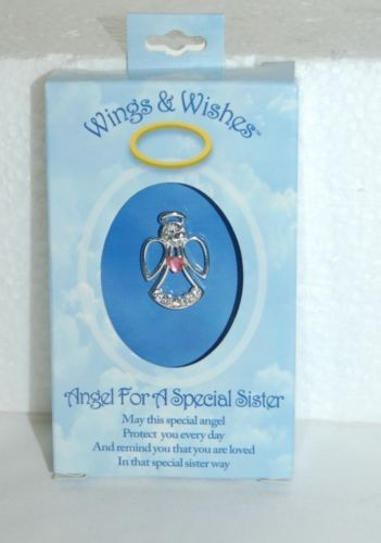 DM Merchandising Wings Wishes Silver Special Sister Clear Stones Pink Stone