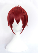 Twisted Wonderland Heartslabyul Riddle Rosehearts Cosplay Wig - $33.00