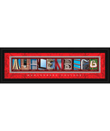 Muhlenberg College Officially Licensed Framed L... - $38.95