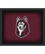 "Bloomsburg University ""College Logo Plus Word Clouds"" - 15 x 18 Framed P... - $49.95"