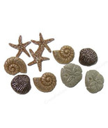 Seashells Novelty Plastic Buttons /DIY Sewing Craft supplies/Party Supplies - $4.25