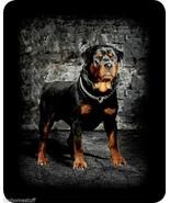 "NEW ROTTWEILER DOG QUEEN SIZE 79"" X 96"" SOFT FAUX FUR MEDIUM WEIGHT BED ... - $56.95"
