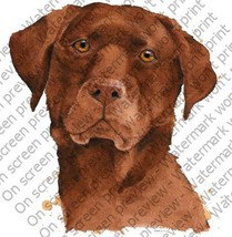 1/4 Sheet ~ Chocolate Lab Dog ~ Edible Image Cake/Cupcake Topper!!! [Misc.] - €7,31 EUR
