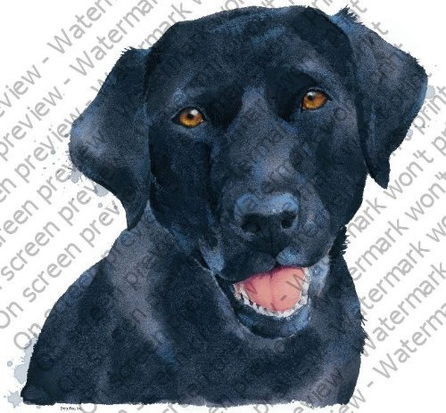Black Dog Cake Decoration : 1/4 Sheet ~ Black Lab Dog ~ Edible Image Cake/Cupcake ...