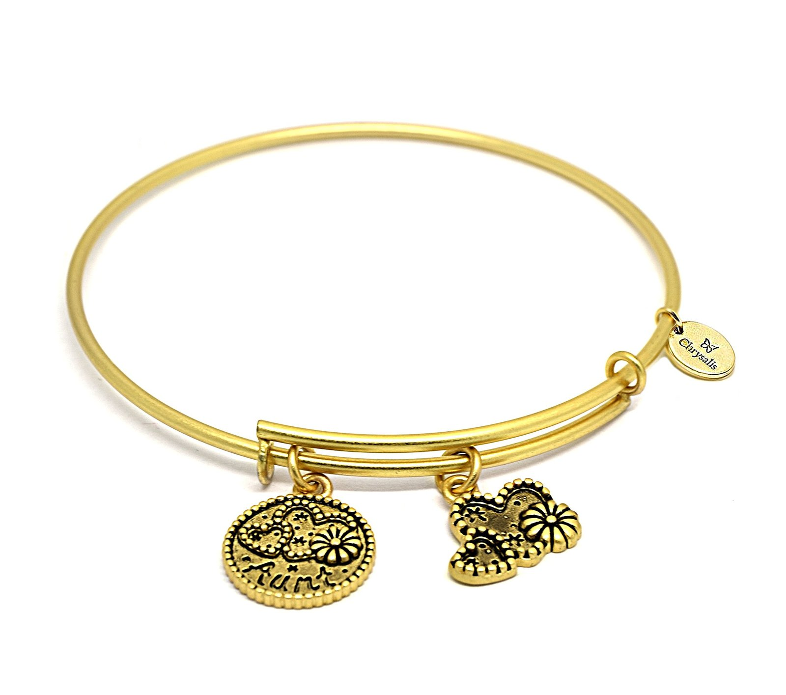 a04f9776cc815 Chrysalis Aunt Friend & Family CRBT0706GP Gold-plated Expandable Bangle