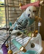 Colorful Rainbow Bird Toy Ladder Climbing Bridge Budgie Parakeet Cockati... - £11.40 GBP