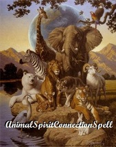 Find Y Our Animal Spirit Spell Free Connection Witch Casting Voodooenergy Powers - $22.00