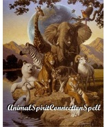 FIND yOUR ANIMAL SPIRIT SPELL FREE CONNECTION WITCH CASTING VOODOOENERGY... - $30.00