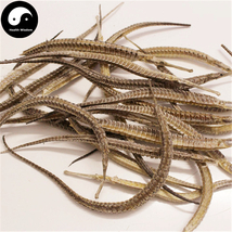 Hai Long 海龙, Syngnathus, Pipe Fish 10g - $11.99
