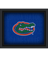 "University of Florida ""College Logo Plus Word Clouds"" - 15 x 18 Framed P... - $49.95"