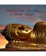 The Stellar CEO The Stellar Opening To Your Sle... - $18.09