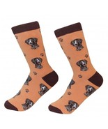 German Shorthaired Pointer  Socks Unisex Dog Cotton/Poly One size fits most - $11.99