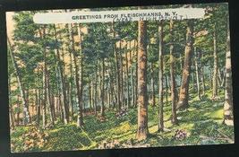 Greetings From Fleischmanns NY 1945 Linen Postcard four bar Highmount ca... - $4.99