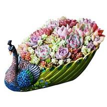 Worila Handmade Peacock Succulent Plant Pot Vintage Cactus Plant Pot/Flo... - $719,82 MXN