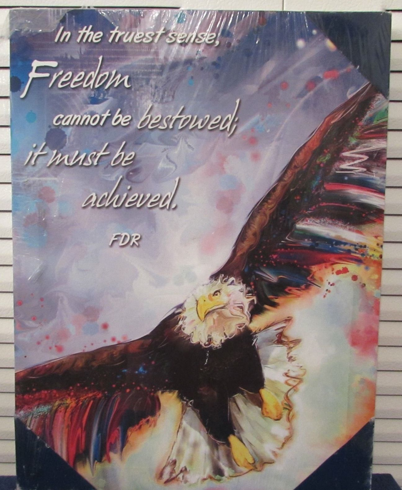 Inspirational/Patriotic Textured American Eagle Print w/FDR Quote Box Frame