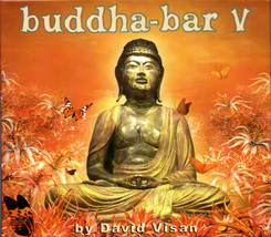 Buddha-Bar V 2 CD Box Set David Visan Ethno-Exo... - $15.00