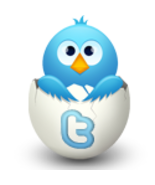 Twitter promotions- 4 times a day for 4 weeks! Try it free for a day! - $14.99