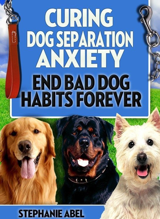 curing dog separation anxiety mp3 audio book ebook training videos books. Black Bedroom Furniture Sets. Home Design Ideas