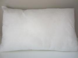 """14 x 26"""" Pillow Insert Indoor/Outdoor  Oblong - $18.85"""