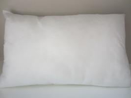 """10 x 22"""" Pillow Insert Indoor/Outdoor  Oblong - $12.19"""