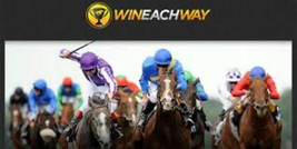 Win each way Betting system - $5.11