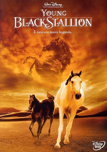 Disney Young Black Stallion (DVD, 2004)