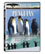 Nature: Penguins - Penguins of the Antarctic/The World of Penguins [DVD]... - $9.79