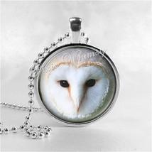 BARN OWL Necklace, Owl Necklace, Owl Jewelry, Owl Pendant, Owl Charm, Bi... - $9.95