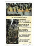 The Legend of The Spanish Moss Vintage Curteich Postcard - $4.99