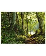 Postcard Portage Path Northern Minnesota Lake Region MN - $2.50