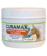 Europharma/Terry Naturally - CURAMAX™ - 1lb. - $59.16