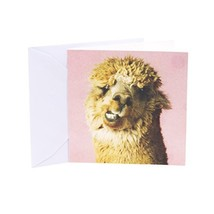 Hallmark Studio Ink Birthday Greeting Card Llama Llove