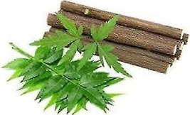 10 pcs ayurvedic Neem Chew sticks pack for healthy teeth Natural Tooth Brush - $5.89
