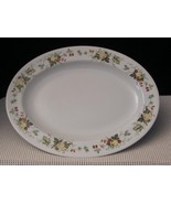"""MIRAMONT"" TC1022 Royal Doulton 13"" OVAL SERVING PLATTER Translucent Fru... - $16.48"