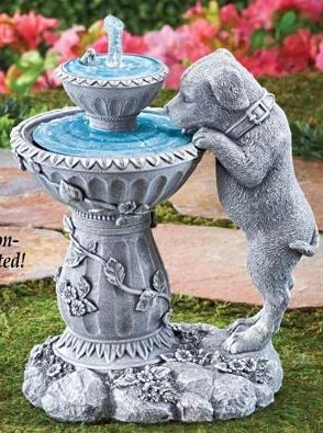Labrador Puppy Fountain
